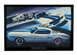 GT350 Poster