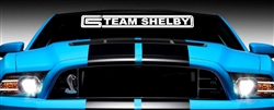 Team Shelby Windshield Decal