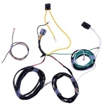 Raptor F-Series Auxiliary Light Harness (w/out OEM Switches) (2010-2014)