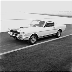 1964 First Shelby Mustang GT350 Canvas Art