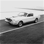 1964 First Shelby Mustang GT350 Framed Print with Double Mat