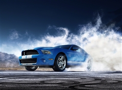 2010 Shelby GT500 Archival Paper