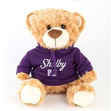 Teddy Bear with Purple Shelby Hoody