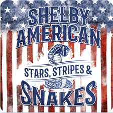Shelby Stars & Stripes Metal Sign