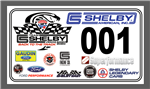 2020 Team Shelby Bash Door Decal Set