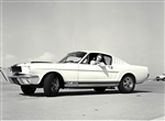 1964 First Shelby Mustang GT350 (with girl)  Archival Paper