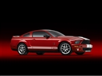 2007 Shelby GT500 Canvas Art