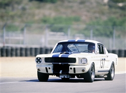 1965 Shelby GT350R Canvas Art
