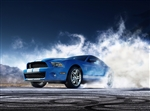 2010 Shelby GT500 Canvas Art